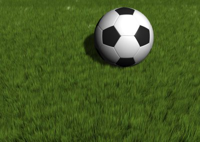A soccer ball on grass - rendered in 3d