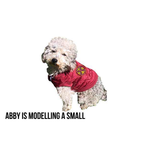 ACSC Dog Coats - Abby is modelling a small